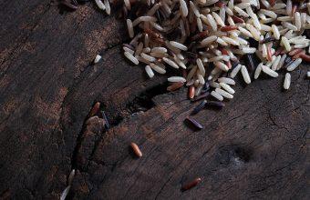 Sonhar com arroz cozido