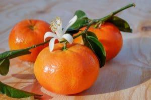 Sonhar com a cor laranja