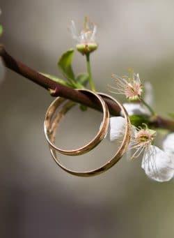esposa - anel de casamento