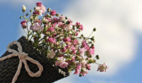 Banho de 7 ervas