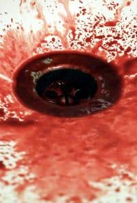 sangue que saiu pela boca